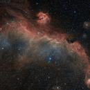 The Seagull Nebula in HOO,                                Alex Roberts