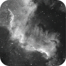 Nebulosa de Norteamerica (NGC 7000) Ha+L,                                Aniceto Porcel