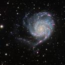 M101 Pinwheel Galaxy,                                AstroBadger