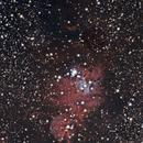 NGC 2264 XMAS TREE CLUSTER/CONE NEBULA,                                donsinger