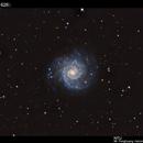 M74,                                Yokoyama kasuak