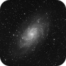 M33 Luminance,                                Antonio.Spinoza
