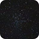 M38,                                Kelly Wood