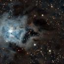 Iris Nebula: NGC 7023,                                keving