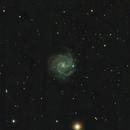NGC 3184,                                henrygoo74d