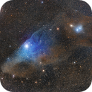 IC4592 - The Blue Horsehead Nebula in Scorpio,                                Terry Danks