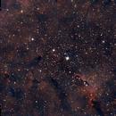 IC1396 Trunk,                                Deraux LeDoux