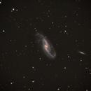 NGC 4536,                                Bob Rucker