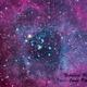 Rosette Nebula,                                Jesús Piñeiro V.