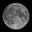 Full Moon,                                David Cheng