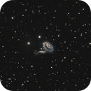 rose galaxy,                                binsky161
