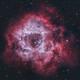 Caldwell 49 - Rosette Nebula in HOO,                                nerdybeardo