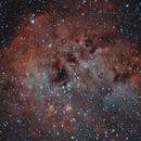 IC410 Tadpoles (Renacuajos),                                Alfredo Beltrán