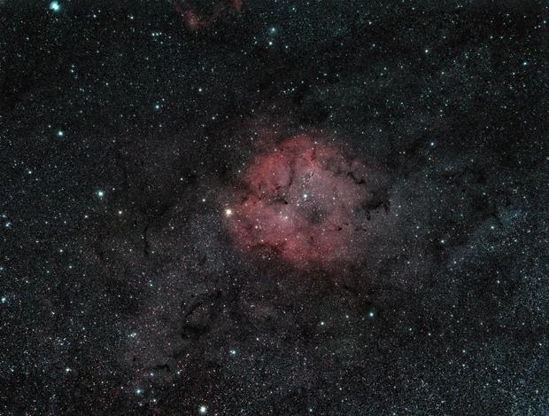 IC 1396,                                quigna