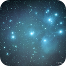 M-45 Pleiades in Taurus,                                Francois Theriault