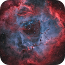 "Rosette Nebula in ""Natural"" Palette,                                Alan Pham"