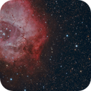 Rosette Nebula and Main-Belt Asteroid (130) Elektra,                                Anthony Quintile