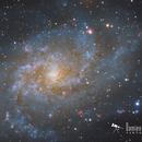 M33 - The Great Spiral in Triangulum,                                Damien Cannane