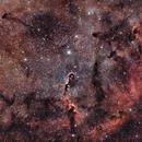 IC1396 dans le Cygne,                                Georges