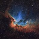 NGC 7380,                                Gary Imm