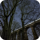 Winter constellations with viaduct,                                Tristan Campbell