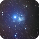 IC348,                                Rabbit Zhang
