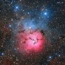 M20 Trifid Nebula HaLRGB,                                Fernando Qi Yang