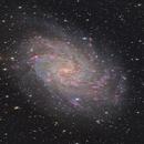M33 - Triangulum Galaxy,                                Steven Marx