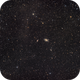 M81 annd M82 in a widefield,                                Stephen Kirk