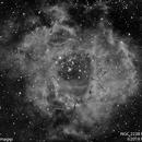 Rosette Nebula #2, Hydrogen Alpha,                                Molly Wakeling