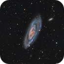 M106 LHARGB,                                Martin Dufour