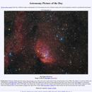 APOD 2019 September 21 - Tulip Nebula, Sh2-101,                                Robert Eder