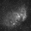 Tulip Nebula,                                Bill Mark