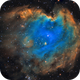 Monkey Head nebula, NGC2174 in SHO,                                Ricardo Pereira