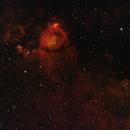 IC1795 Fishhead Nebula Narrow Band,                                Nick Davis