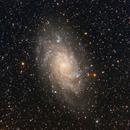 The Triangulum Galaxy,                                DiscoDuck