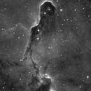 The Elephant's Trunk in IC 1396,                                Gintas Rudzevicius