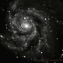 M101,                                Robert St John