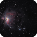 The Orion Nebula - M42 Reprocessed with Star Tools 1.6,                                Van H. McComas