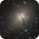 Centaurus A / NGC 5128 / Caldwell 77,                                Terry Robison