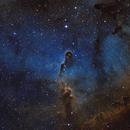 IC1396 (Elephants Trunk) in Hubble Palette,                                Trevor Nicholls