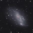 IC 2574 Coddingtons Nebula,                                Lyn Peterson
