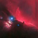 Starless Horse head nebula,                                U-ranus