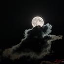 Harvest Moon,                                Alessandro Merga...
