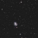 NGC7479  T250 f/4  /  ATIK ONE  /  AZEQ6,                                Pulsar59
