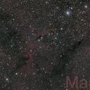 IC1396 Elephant's Trunk nebula,                                Martin