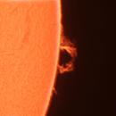 SOLE 2020 11 18,                                antoniogiudici