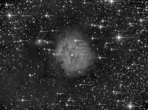 IC 5146 luminance data,                                Marcel Demandt