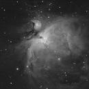 M42 in 240 seconds,                                Michael Lorenz