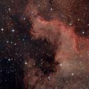 "NGC 7000, ""Gulf of Mexico"",                                Patrick"
